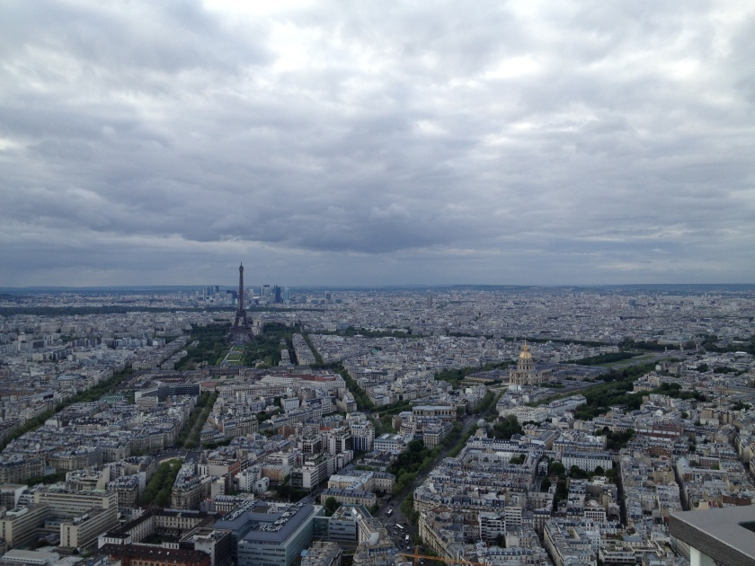 Paris and the Effects of Haussmannization